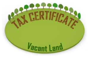 Tax Certificate Photo